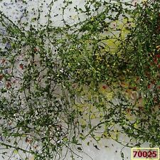 Mp Scenery 10g Pack Of Climbing Vines 3 Options Architectural Plants Railroad