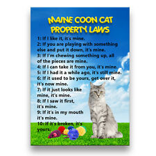 MAINE COON CAT Property Laws Fridge Magnet No 1 Funny