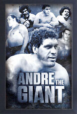 ANDRE THE GIANT 13x19 FRAMED GELCOAT POSTER WRESTLING LEGEND ICON WWE WWF CHAMP!