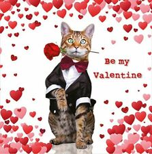 Valentines Day Card General Cat With Rose