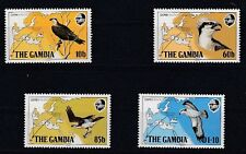 D.Gambia 479 - 82 Bird - Birds (MNH)