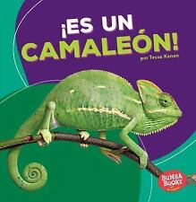Bumba Books (tm) en Español -- Animales de la Selva Tropical (Rain Forest...
