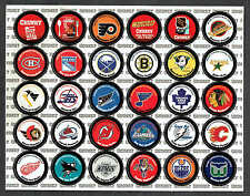 """1995-96 Campbell's Chunky Soup NHL """"Puck Caps"""" Pogs Complete Set of 30"""
