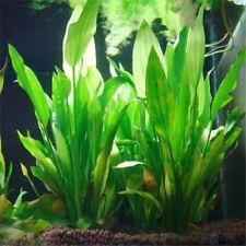 Bamboo Ornament Artificial Fish Tank Aquarium Decor Plant Plastic Water Grass 9o