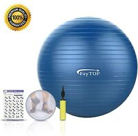 65 CM Exercise Ball ( Free yoga socks and exercise guides)