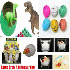 6PCS Hatching Growing Large Dinosaur Dino Eggs Add Water Magic Cute Children Toy