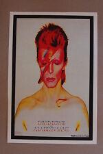 David Bowie Aladdin Sane Concert Tour Poster 1973