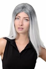 Women's Wig Gothic Goth Long Smooth Middle Part Ombre Grey Mix GFW1809