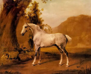 Dream-art Oil painting George Stubbs - a grey stallion in a landscape horse art