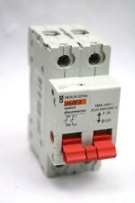 Merlin Gerin Multi9 125A Double Pole Main Switch Disconnector MGI1252 (G198)