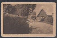 39411) AK Mühlenbarbek bei Kellinghusen ca. 1920
