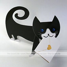 """3D Special Delivery Greeting Card - Cat """"Tommo"""" - SD-004"""