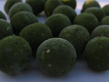 Freezer Baits Green 20mm Boilie's For Carp Fishing GLM Flavour Fishing Baits