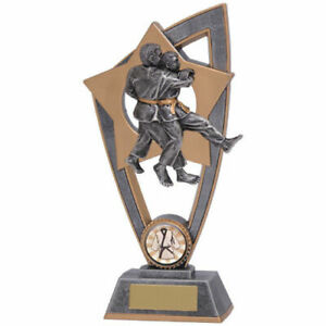 judo Gold Resin Trophy 2 sizes With Free Engraving up to 45 Letters