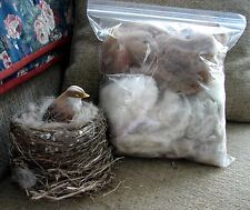 ALPACA FIBER~The BEST Hummingbird / Bird Nesting Material~Natural, Soft, Warm!