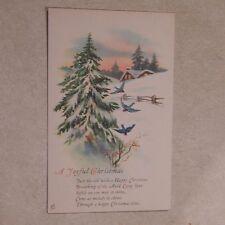 Vintage Postcard A Joyful Christmas Poem, Winter House Scene, Tree, Bluebirds
