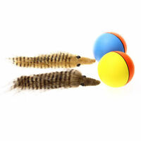 Popular Pet Toy Ball Weasel Rattrap Plush Battery Powered Cat Rolling Water Play