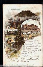 176.107 Salut V. inselberg, Gothaisches Hôtel, coq de bruyere, HIRSCH, gl1897, EC