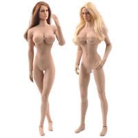TBLeague PHICEN 1/6 Female Skeleton Seamless Suntan Figure Body + KIMI Heads US