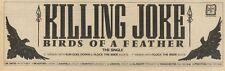23/10/82Pgn19 Advert: Killing Joke birds Of A Feather The Single 3x11