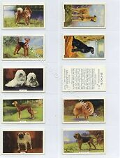 Full Set, Gallaher, Dogs, 2nd Series 1938 VG (Ga3152-451)