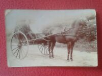 POST CARD POSTAL FOTOGRÁFICA HOMBRE EN CARRO CON CABALLO CARRUAJE CHARIOT HORSE