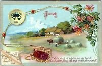 Raphael Tuck June Birth Month Cancer Agate Honeysuckle Embossed 1910 Postcard