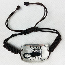 HD Jewelry Fashion Bracelet Charm With Black Scorpion Insect Specimens Rectangle