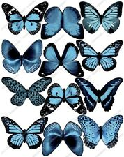 Cakeshop 12 x PRE-CUT Light Blue Edible Butterfly Cake Toppers
