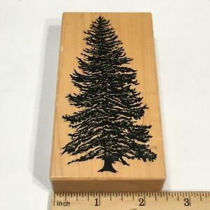 PSX Spruce Tree Rubber Stamp K-1465 Christmas Nature Background Scenery