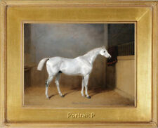 "Old Master Art Portrait Animal Grey White Horse Oil Painting Unframed 30""x40"" in"