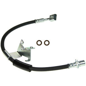 Brake Hydraulic Hose Front Right Wagner BH142756