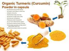 1000 capsules x 350 mg Curcumin powder organic natural pure 100%