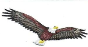 AMERICAN EAGLE IN FLIGHT Iron On Patch Birds