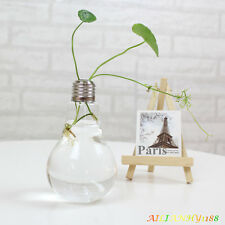 Transparent Light Bulb Stand Glass Plant Flower Vase Hydroponic Container Pot hy