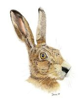 March Hare Limited Edition Giclee PRINT of original coloured pencil drawing