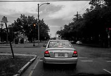 """Love is the Movement NEW ORLEANS 13x19"""" Print SIGNED by Louis Maistros"""