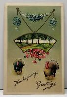 Thanksgiving, Pretty Park Scene & Turkeys Embossed Postcard F12