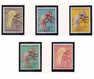 (tbd1115) Netherlands New Guinea 1954 bird MNH