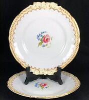 "Vintage Royal Worcester Kent 9"" Plate Pair Handled Serving Plates"