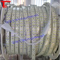 1-10M 220V 2835 Warm White Double Row LED Strip Rope Light Lamps 180LED/M +Plug