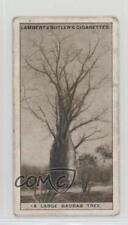 1928 Lambert & Butler Rhodesian Series Tobacco Base #7 A Large Baobab Tree 1i3