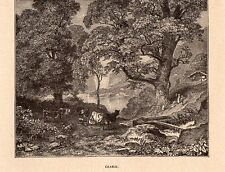 ERABLE ARBRE MAPLE TREE IMAGE 1912 OLD PRINT