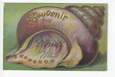 A Snail Shell Souvenir from Morrill Maine ME