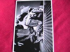 WW11 German Fallschirmjäger  Photo twenty five