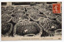 CHAMPAGNE Vins Vignes et thémes Vendanges paniers Le raisin avant la pesée