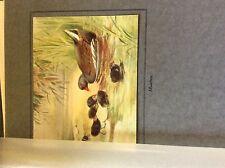 m3e ephemera book plate roland green  birds moorhen