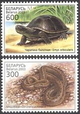 Bielorussia 2003 Pond Tartaruga/SNAKE/rettili/Animali/NATURA/animali selvatici 2v Set (n13165)