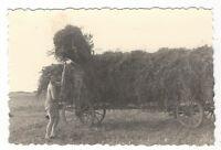 20/590 FOTO IPHOFEN 1941 LANDWIRTSCHAFT HEUERNTE BAUER LANDWIRT LEITERWAGEN