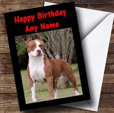 American Pitbull Perro Personalizado Cumpleaños tarjeta de saludos